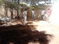 Atividade de horta sustentável - Colégio Estadual Rui Barbosa - Juazeiro-BA - 06.11.15