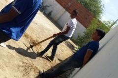 Escolas desenvolvem arborização de suas áreas