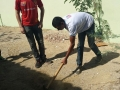 Atividade de arborização - Colégio Antonílio da França Cardoso - Juazeiro-BA - 20.11.15