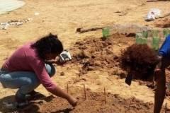 Escolas iniciam desenvolvimento de Hortas Agroecológicas