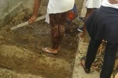 Estudantes e professores desenvolvem horta e compostagem na escola
