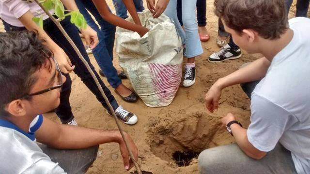 Atividades de Arborização. Escola Rui Barbosa. Juazeiro-BA. 29-07-2016