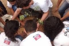 Estudantes e professores mobilizados para arborização de escolas