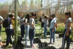 Estudantes e professores realizam Visita Técnica ao CCA/Univasf
