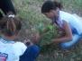 Estudantes realizam arborização da orla do Rio e visita à Univasf