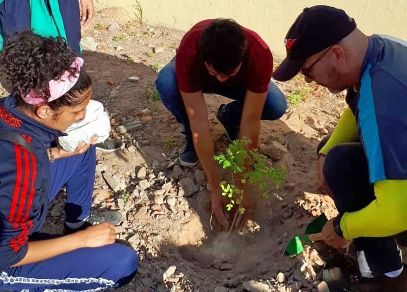 Atividade Arborização. Escola Estadual Dom Malan. Petrolina-PE. 26/07/2019