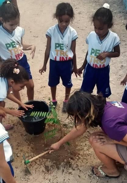 Atividade Arborização. CMEI Edith Bezerra. Petrolina-PE. 24/07/2019