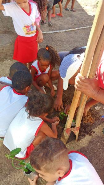 Atividade Arborização. CMEI Luzinete Oliveira. Juazeiro-BA. 12/07/2019-19/07/2019