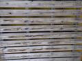 Atividade Horta Agroecológica. Escola Municipal Odulfo Domingues, Escola Dr. José Araújo de Sousa e Residencial Vila Real. Ibipitanga-BA e Petrolina-PE. 23/08/2019-31/08/2019.