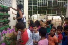 Horta Escolar Agroecológica