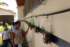 Horta Escolar, Jardinagem e Sistema de Irrigação Alternativo