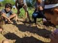 Atividade Horta Agroecológica. Sobradinho-BA e Petrolina-PE. 17/10/2019-25/10/2019.