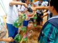 Atividade Horta Agroecológica. Escola Municipal São Domingos Sávio.Petrolina-PE. 12/09/2019.