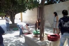 Hortas de materiais reciclados mobilizam escolas