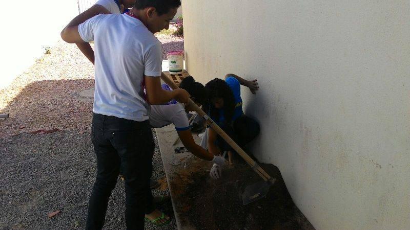 Atividade de horta vertical - EMAAF Escola Marechal Antônio Alves Filho - Petrolina-PE - 28.10.15
