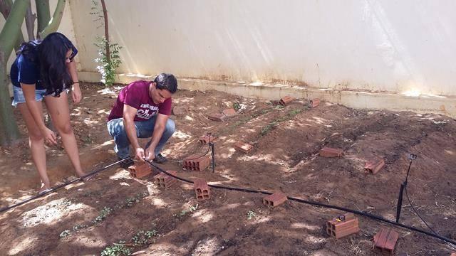 Horta Escolar Agroecológica. Escola Rui Barbosa. Juazeiro-BA. 03-06-2016