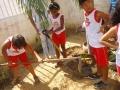 Horta Escolar Agroecológica. Escola Iracema Pereira da Paixão. Juazeiro-BA. 03-06-2016
