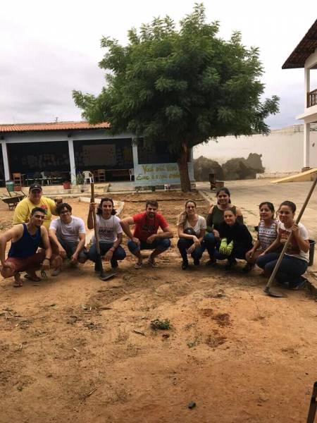 Atividade Horta Agroecológica. CAPS II. Petrolina-PE. 10/07/2019-23/07/2019