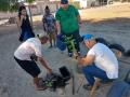 Atividade Arborização. Bairro Vila Eduardo. Petrolina-PE. 06/08/2019