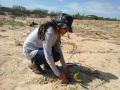 Atividade Arborização. UNIVASF-CCA. Petrolina-PE. 27/01/2020.-31/01/2020.