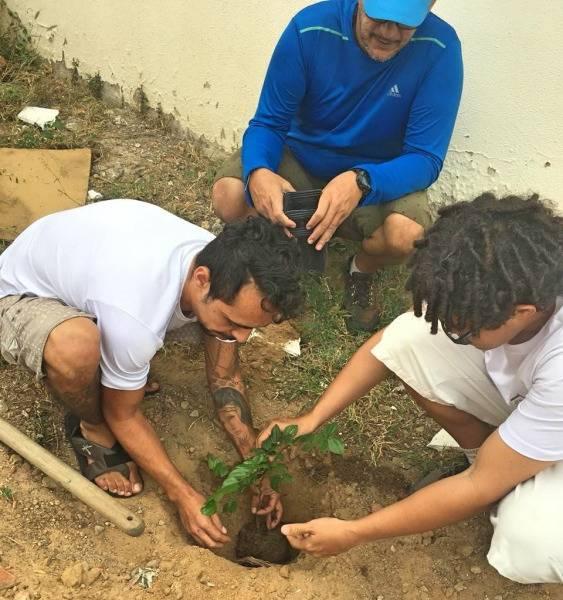 Arborização de comunidades do Vale do São Francisco. Julho de 2019.