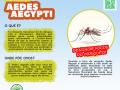 PANFLETO-VIRTUAL-AEDES-AEGYPTI