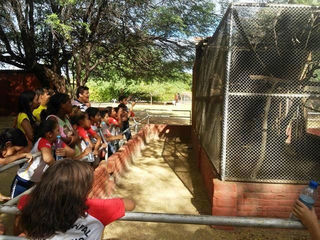 Visita Técnica - Parque Zoobotânico. Escola Luis Cursino. Juazeiro-BA. 04-05-2016
