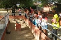 Parque Zoobotânico e Cemafauna recebem visitas técnicas