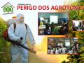 destaque agrotox