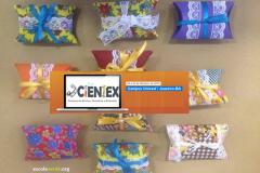 PEV desenvolve Oficinas e Minicursos durante a IX Scientex 2016
