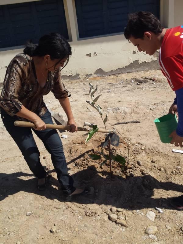 Atividade de arborização - Escola Gercino Coelho - Petrolina-PE - 12.12.15