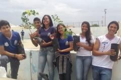 PEV promove arborização de escola
