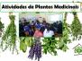 Plantas medicinais é tema trabalhado pelo PEV em escolas
