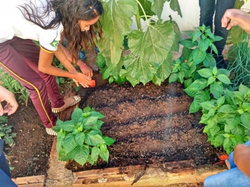 Atividade Horta Agroecológica. Escola em Tempo Integral Joaquim Horácio Ribeiro. São Raimundo Nonato-PI.  11/05/2019