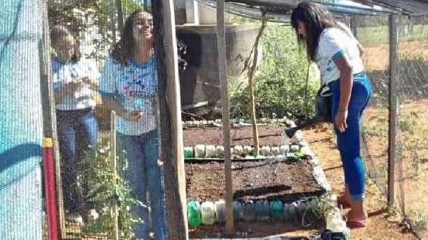 Atividade Horta Agroecológica. Escola Newton Juazeiro. Juazeiro-BA.  06/07/2019-30/05/2019