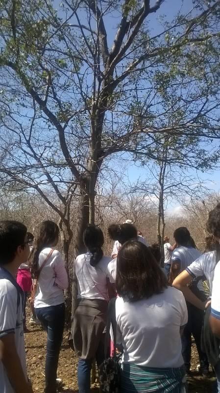 Visita técnica à Embrapa - Escola Gercino Coelho - Petrolina-PE - 23.09.15
