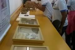 Professores e alunos fazem visitas técnicas à instituições socioambientais