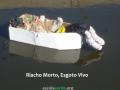 Intervenção de Arte Ambiental. Riacho da Malhada. Juazeiro-BA. 01/09/2017.