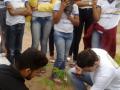 Sistema Alternativo de Irrigação é testado em ações de Arborização