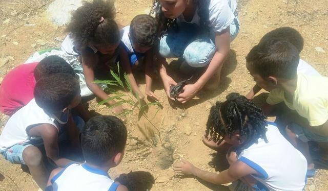 Atividades de Arborização. Escola Dilma Calmon. Juazeiro-BA. 25-11-2016