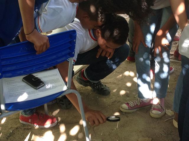 Redescobrindo a Caatinga. Escola Antonilio de França Cardoso. Juazeiro-BA. 07-07-2016
