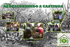 Valorização do bioma Caatinga