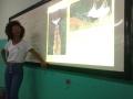 Animais da Caatinga 17