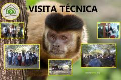 Visita ao Parque Zoobotânico sensibiliza alunos e professores