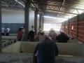 Visita técnica à Codevasf - Colégio Carlos Drummond de Andrade - Petrolina-PE - 06.11.15