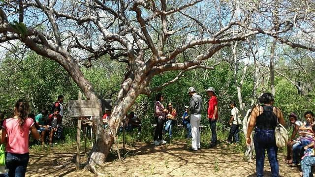 Atividade de visita aos laboratórios da Embrapa e trilha pela Caatinga – Escola Luis Cursino – Petrolina-PE – 11.03.16 ( (10)