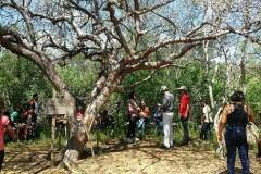 Visitas técnicas sensibilizam professores e alunos para a preservação ambiental