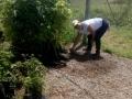 Mutirão de limpeza no Viveiro do Projeto Escola Verde, no Campus de Ciências Agrária