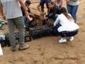 Viveiro possui 150m2 e é usado para diversas atividades do PEV. (Petrolina, 14/02).