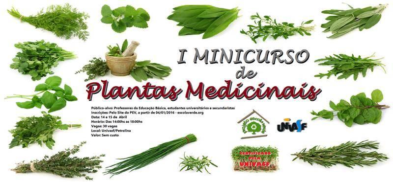 Minicurso de Plantas Medicinais